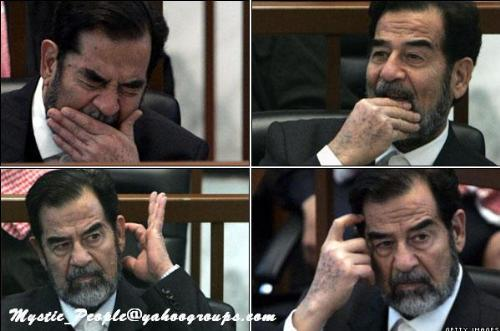 saddam the old tiger - saddam the old ruler