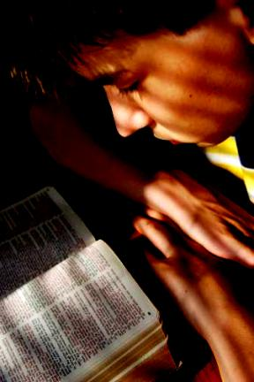 bible - book, the bible