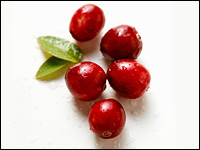 cherry - Cherries are a favorite fruit