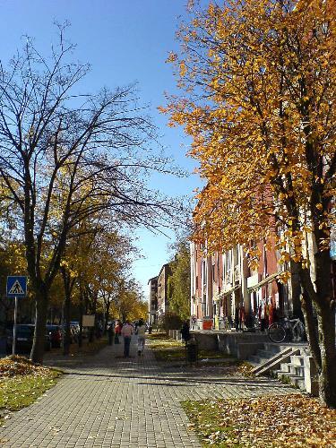 Kazincbarcika, Hungary - Kazincbarcika is a town in Northern Hungary. This is the main street of the city, in Autumn 2006.