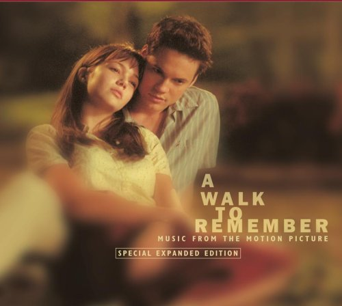 a walk to remember - a journey of life..from the movie a walk to remember where you will always remember when you watched this movie.