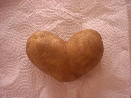 Potato Heart - I love Mylot.