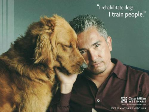 Cesar Millan AKA Dog Whisperer - Cesar Millan