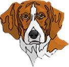 Dog - Cute Brown Dog