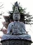 Lord Gautam Buddha. - The picture of Lord Gautam Buddha of Buddhist religion.