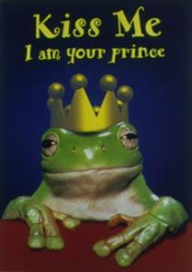 prince frog are scattered around...beware! - prince frog