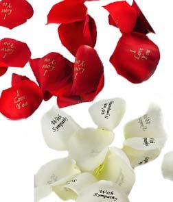 Rose Petals - Rose Petals are from below link www.cherishedroses.com/images/roes_petals.jpg