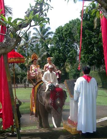 Wedding anniversary and Elephant ride in Bali - It's fun just by looking it. We will both look very different. I think it's a good idea for anniversary and worth saving money for :)
