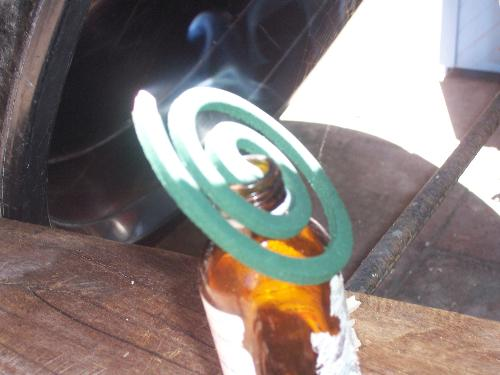 mosquito coil - are they effective?