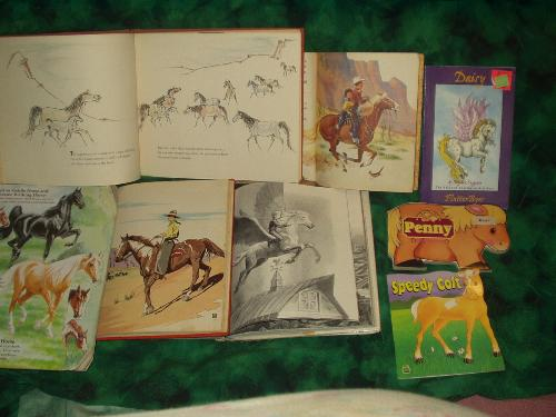 Kids horse books - I love collecting kids horse books. They're usually absolutely beautifully illustrated and some of the stories are pretty sweet too.