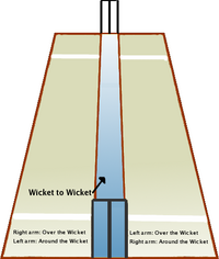 Cricket pitch - The cricket pitch