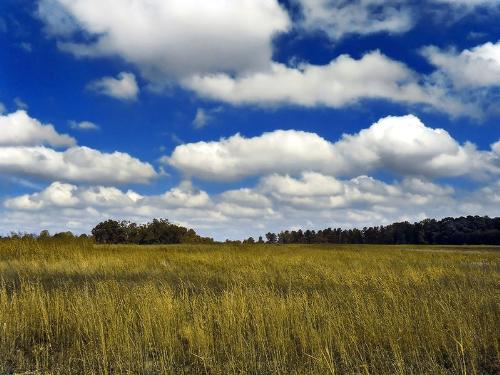 landscape with clouds - landscape with cumulus clouds over a medow
