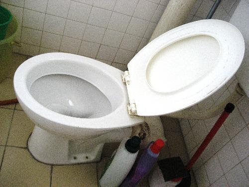 Toilet bowl. - A toilet bowl that could have done with more cleaning.