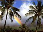 Hawaii - If I could choose a place to live, I'd go to Hawaii