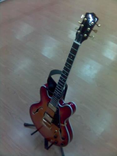 my elc guitar - sounds good, low price, looks like Gibson E335(little different)