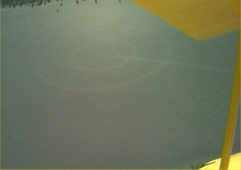 ufo - suspected landing of UFO