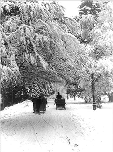 Winter in the old Bucharest - I am also a hopeless dreamer and I love the inter-war period.This is a picture taken in 1935...that says more than any of my words can say