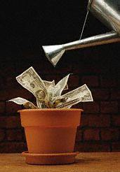 does money really grow? - should you save money or spend it?