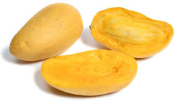 mango is king of fruits - mango is king of fruits. mango is sweet in eating