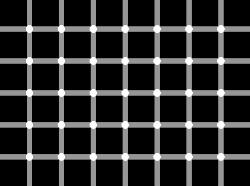 Black dots - Try to count the black dots