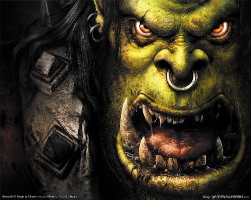 Warcraft - Warcraft, very good video game !!!
