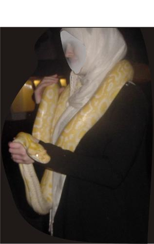 So ccool - This is an albino Burmese python, Massive in size and powerful. Due to their sober temperament they are quite popular in the pet trade. But only an experienced person is advised to keep them as a pet. Also normally when these pets are fed the owners take enough precautions.