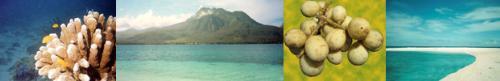 http://www.camiguin.redbearnet.com/ - camiguin island, philippines