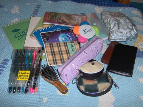 13 things inside - 13 things inside my bag
