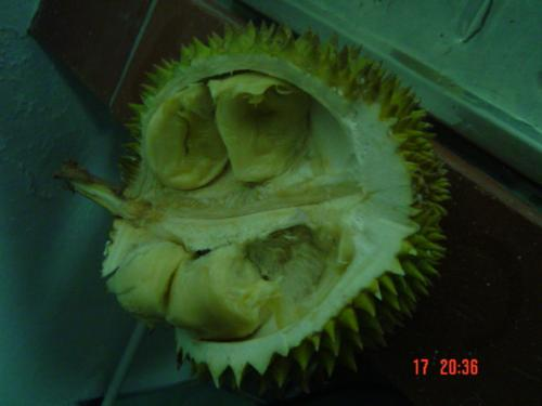 King of Fruits - Durian - It flesh is very smooth and thick. The skin is torny and the smell is weird but believe me it taste gooooddd.