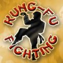 kung fu - fight