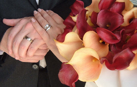 wedding rings - newly wed