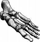 bone density - what can it do?