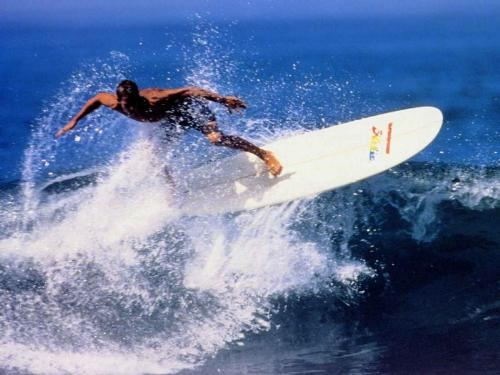 surfing____really fun - surfing