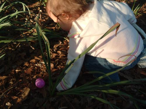Sena going after an easter egg - This was Sena's first real easter egg hunt. She had so much fun!