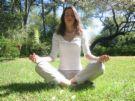 meditation -  meditation