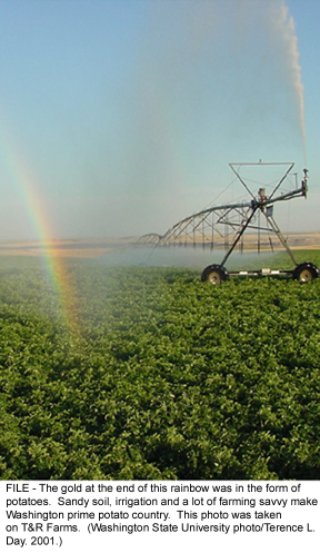 Irrigation is the way to go - Where rains are unreliable, food production will always go on all year round!