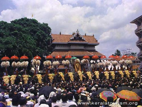 trissuer pooram - this is the festival where lots of elephants are standing in a line