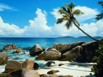 sun and beach - see at the beautiful sun and beach