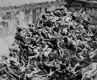 auschwitz - a large number of dead bodies