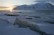 arctic ice cap - arctic ice cap which you could find on the arctic ocean