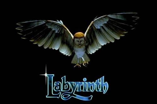 Labyrinth - a fantasy film by Jim Henson, the story revolves around Sarah's quest to rescue her little brother from Jareth the Goblin King.