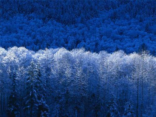 winter in the mountain - This image is programmed in our computer software, this one is a good example, i've been searching for.