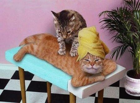 Was It Exhilarating Or Painful? - Massages if done correctly are the BEST!!!There's nothing like it!