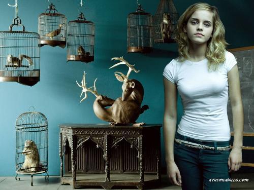 Young Emma Watson (1333×2000) | Emma watson, Emma watson