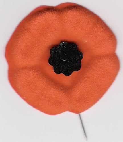 poppy - We wear poppies on November 11 to honor our war veterans.