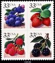 berry - berry