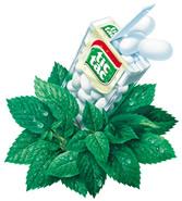 Tic Tac mints - Tic Tac original Flavor mints