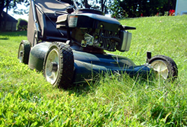 Lawn Mower - A picture of a lawn mower.