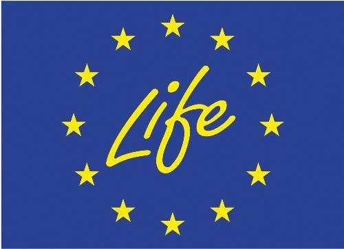 Life - Life is beautiful