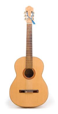 guitar ,a musical insturment - over all look of guitar